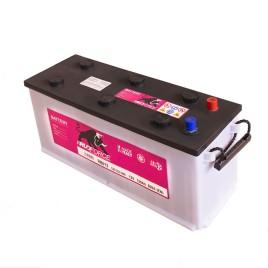 Batteria 120 Ah 800 A +DX  (cod. RB012)