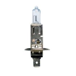 Lampadina H1 24V